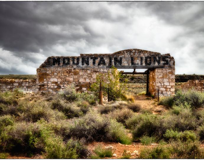 Mountain Lions.jpg