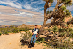 Larry-Dogs At Joshua Tree