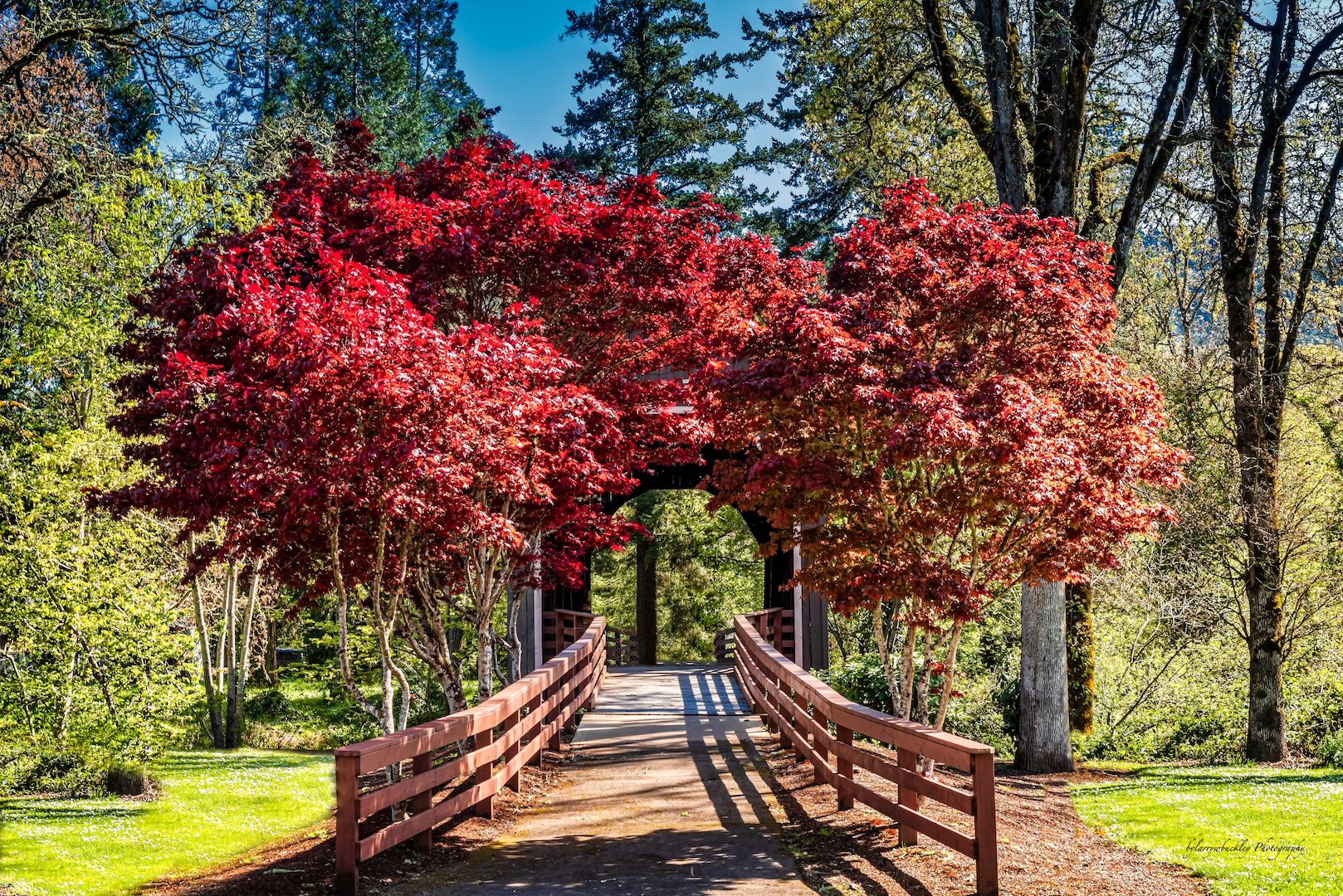 Pass Creek Bridge