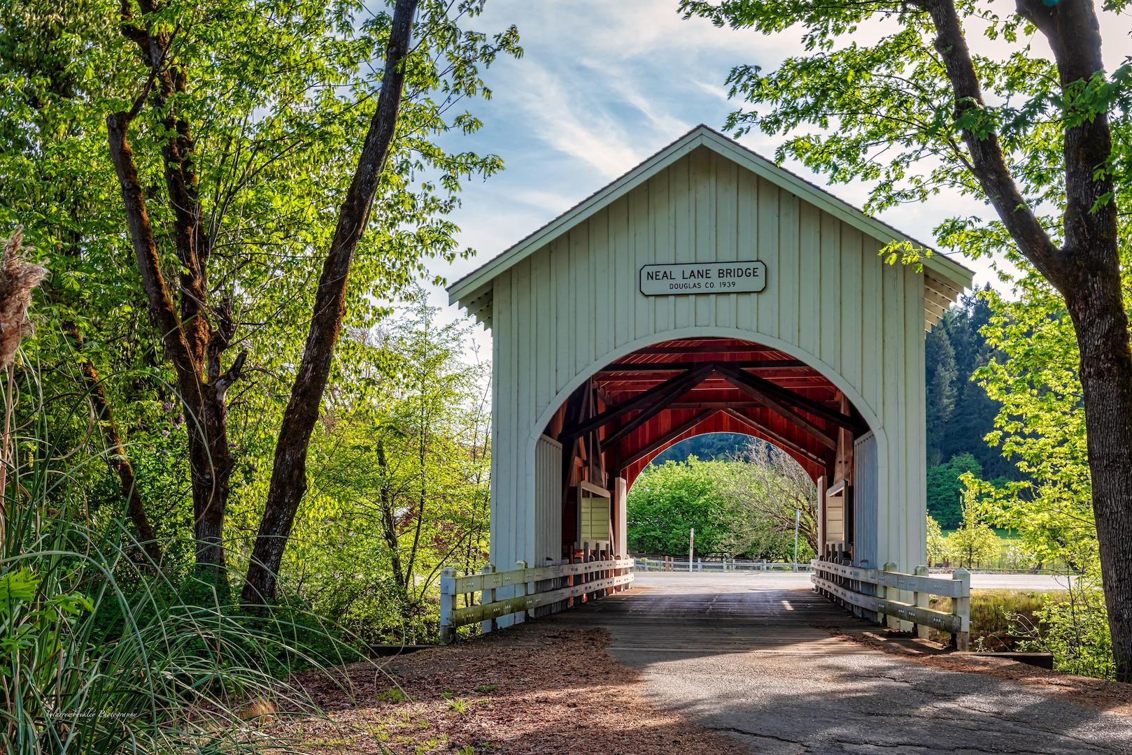 Neal Lane Bridge