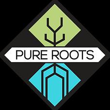 6 logo 1.PNG