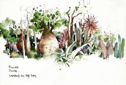 Baobab trees, Flower Dome