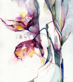 Wild Sunday Bloom 3