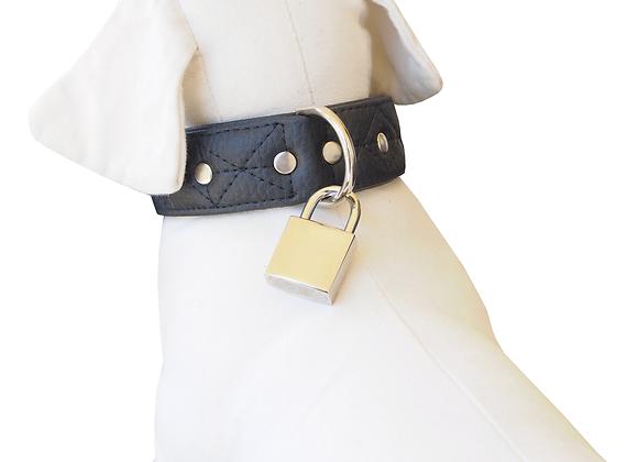 Collar black leather
