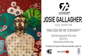 Josie Gallagher Galeria77 soloshow.jpg