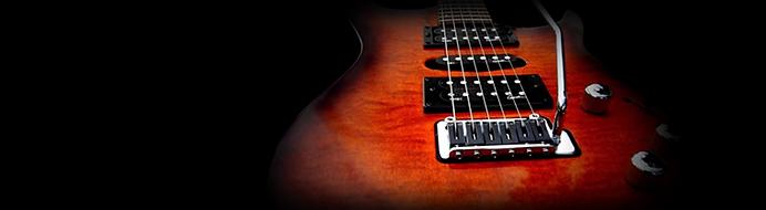 Гитара_стоимость.png