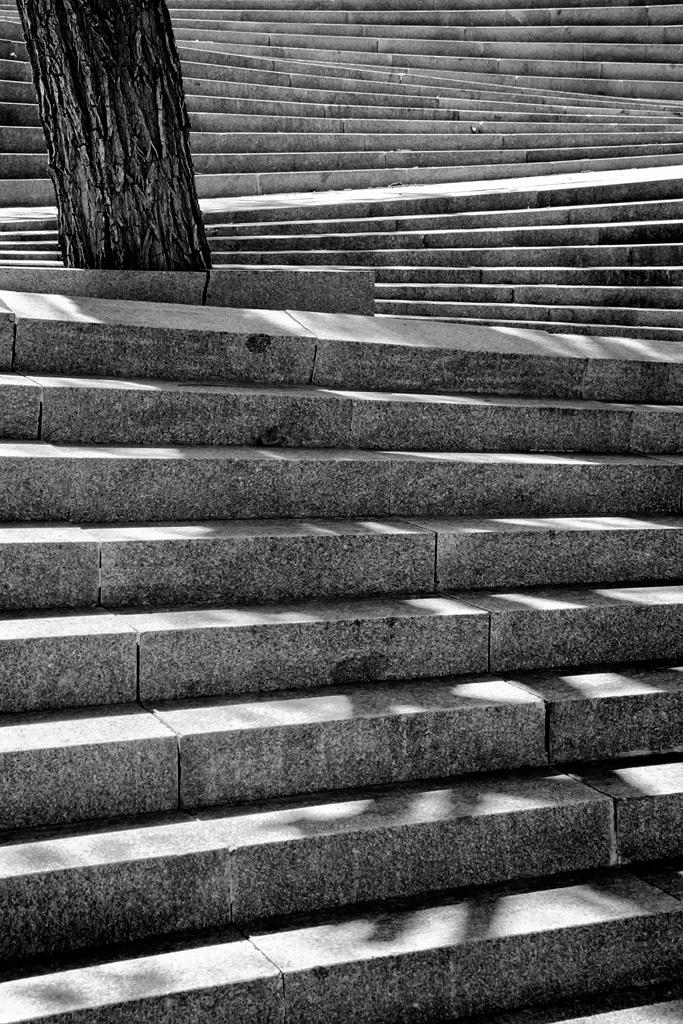 Escaleras III