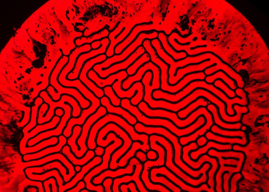 ferro-neon-red1-003