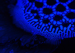 ferro-spikes-blue005