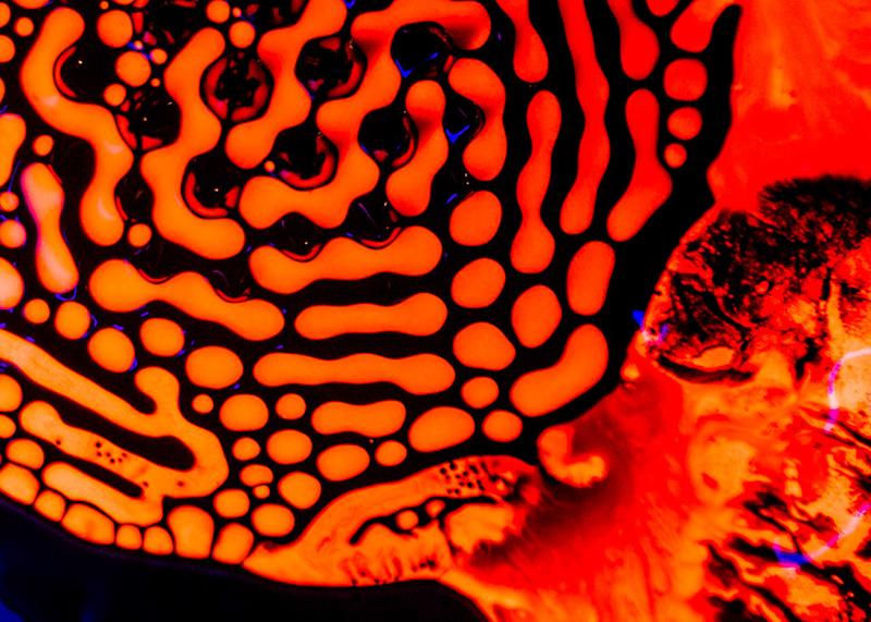vert-neon-orange-no1-003