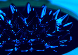 blue-spikes-low-angle-003-5x7