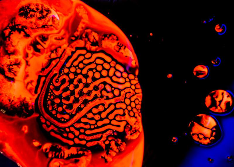vert-neon-orange-no4-006