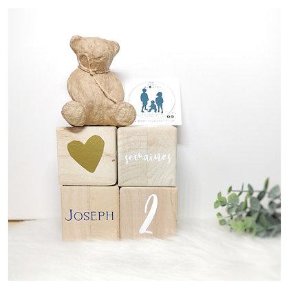Cubes en bois étape de vie de bébé