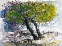 Arbre à Gordes, 2015,30x40,crayon aquarelle, Christine Lévy-Rostagnat