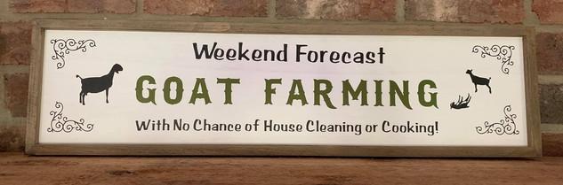 WEEKEND FORECAST - GOAT FARMING