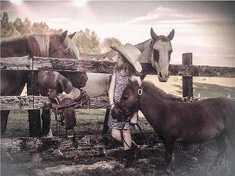 Shady Creek Farms.jpg