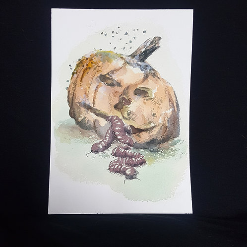 pumpkin (original painting)
