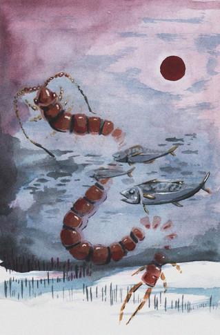 snow centipede