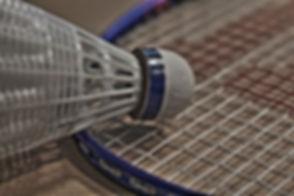 badminton-1019104_1280.jpg