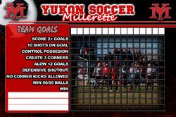 Yukon Lady soccer goals 36x24 PROOF