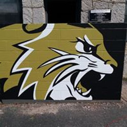 Neosho Fieldhouse Wall Graphic 1 2018 -L