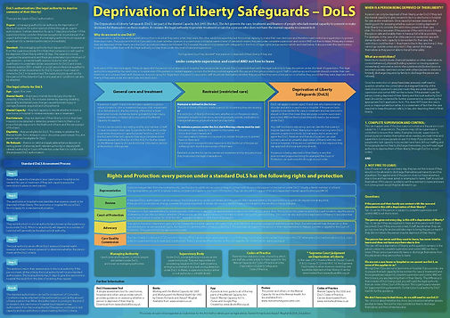 Deprivation of Liberty Safeguards (DoLS) wallchart