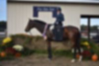 21 High Point Horse.JPG
