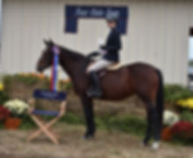 07 Pony Hunter CH.JPG