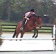 Aileen Teddy Jump FOF.jpg
