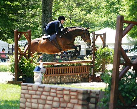 Scooter Sidesaddle Upperville.jpg