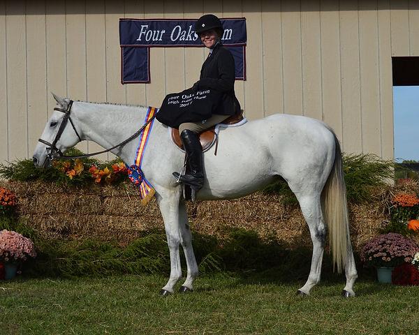 19 HP Horse.jpg