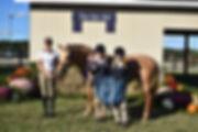 19 HP Pony.jpg