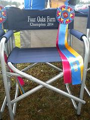 2014 Chair.JPG