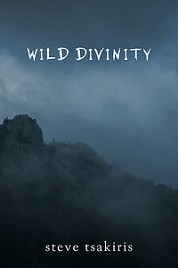 Wild_Divinity_Front_Cover_300dpi (2).jpg
