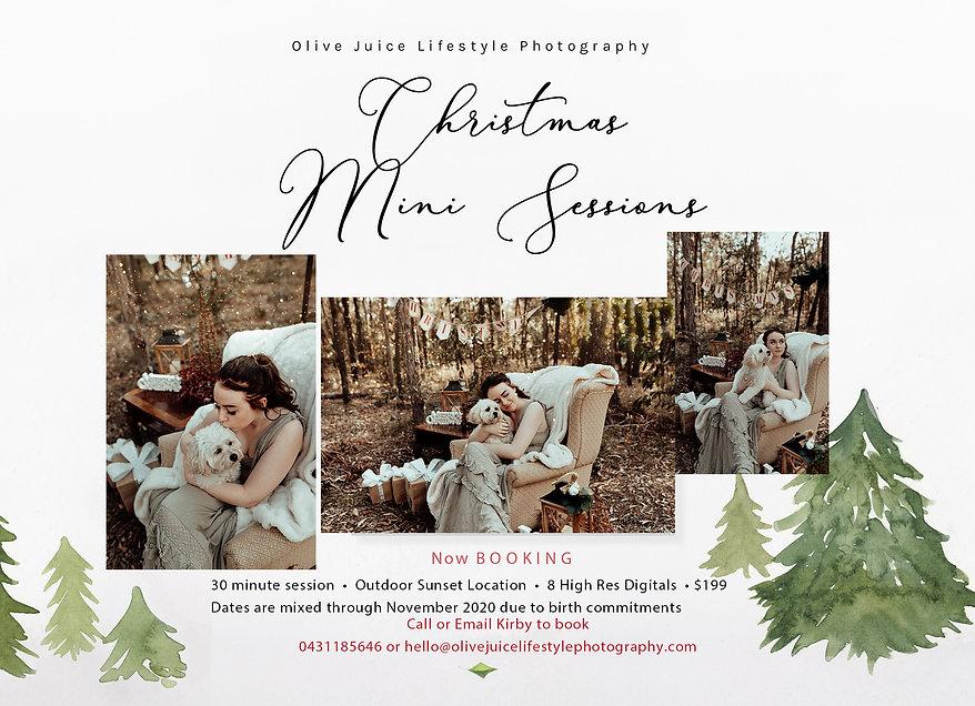Christmas Session Olive Juice Lifestyle.