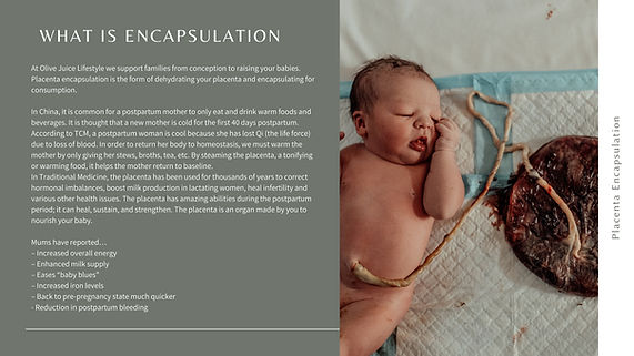 What is encapsulation.jpg
