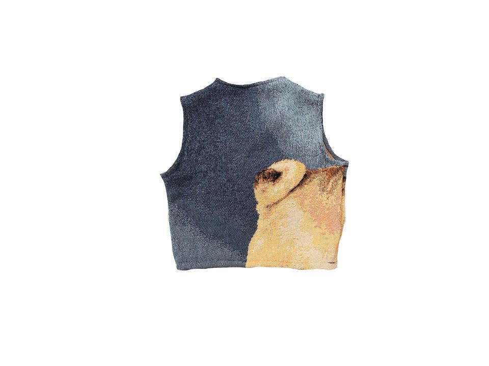 pug vest back.jpg