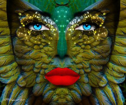 Phoenix Face