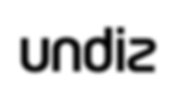 logo-UNDIZ.png