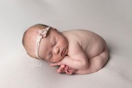 Newborn Studio Sessions