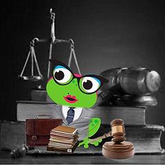 freeda lawyer.jpeg