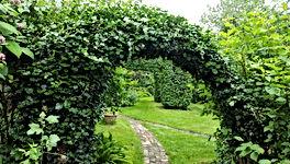 Tuin Kasteel Beaxem, Garden Castle Baexem | Get Your Life On Stream Vital Life Connection