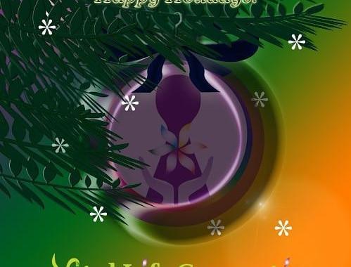 Enjoy your holidays everyone!🎄✨ Fijne feestdagen toegewenst! 🎄✨ #christmas #holidays #celebration #celebrate #happy #joy #sparkle