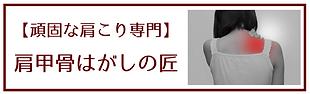 本文を追加 (3).png