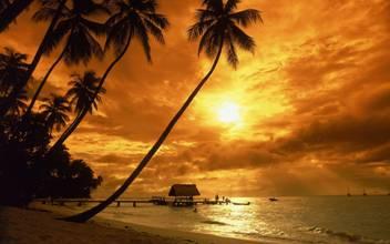 Cenário gigante Hawaii Sunset