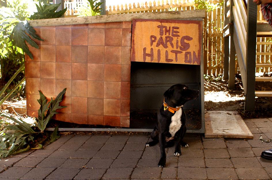 paris hilton - epson print ready