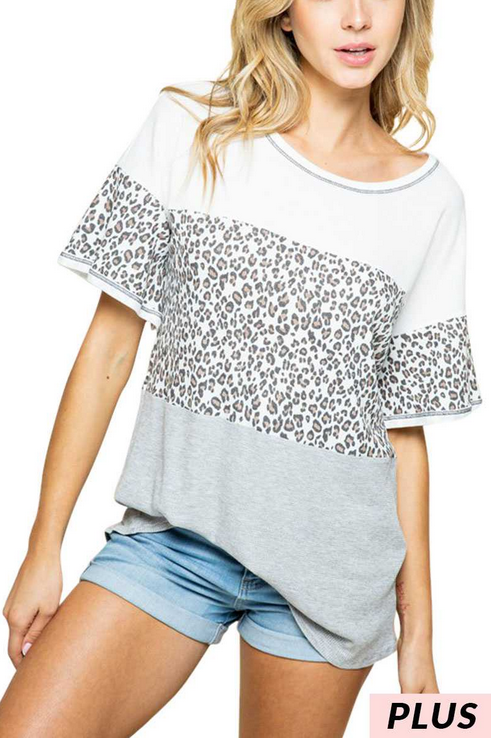 Plus - Leopard Print Block Top