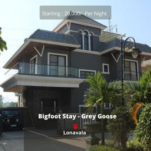 Bigfoot Stay - Grey Goose
