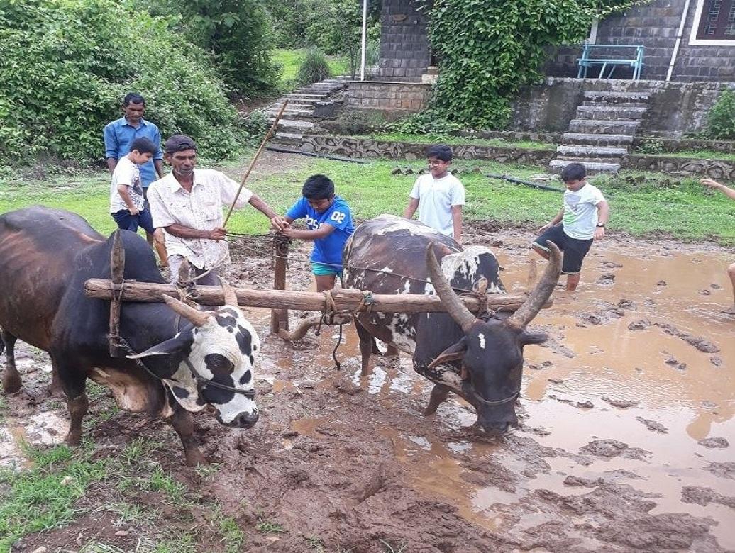 Field-Plowing