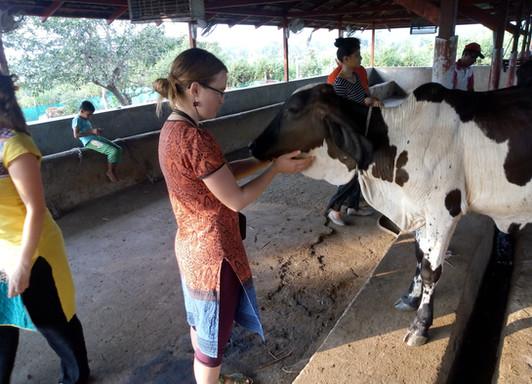 Farmstay Near Mumbai And Pune